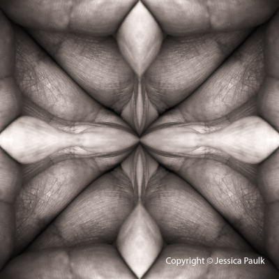 jessica-paulk-biomorphic-series NAME 3286